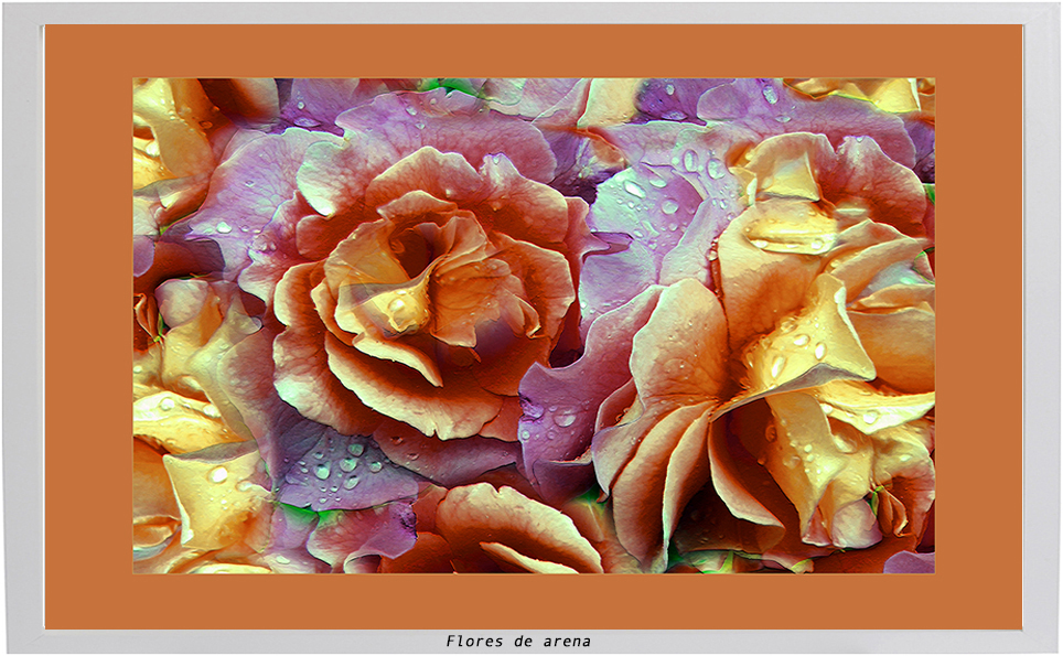 Flores de Arena