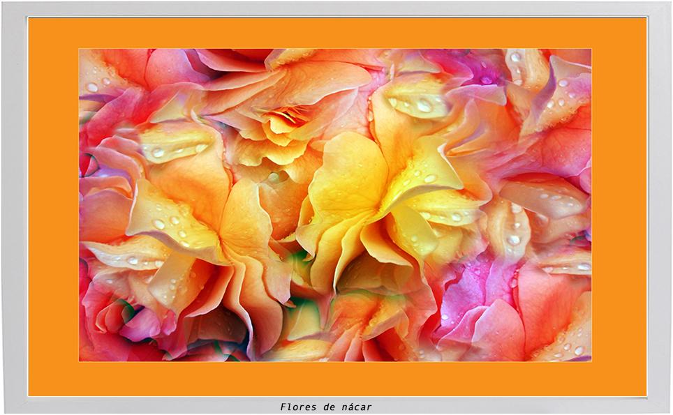 Flores de Nacar